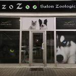Witryna sklep zoologiczny