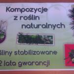 Plakat kompozycje roślinne